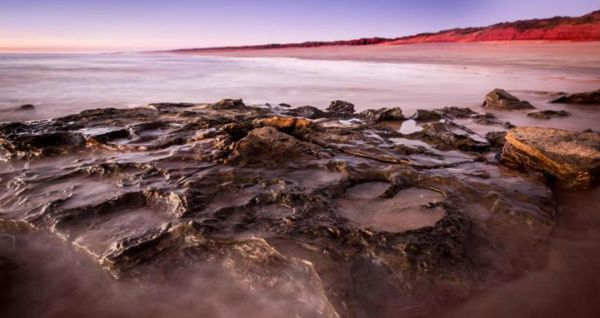 21 types of dinosaur tracks found in Australia