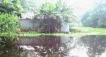 ডিমলায় তিস্তার পানি বৃদ্ধিতে বেশ কিছু এলাকা প্লাবিত