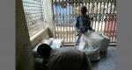 মির্জাপুরে কেজি দরে বিক্রি হচ্ছে প্রাথমিকের সরকারি বই