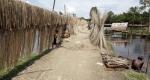 উলিপুরে ক্রয় কেন্দ্র না থাকায় ন্যায্যমূল্য বঞ্চিত পাটচাষীরা