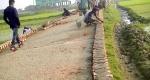 সুনামগঞ্জের শাল্লায় নিম্নমানের সামগ্রী দিয়ে চলছে রাস্তা সংস্কারের কাজ