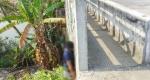 রূপগঞ্জে রাস্তার পাশে যুবকের ঝুলন্ত মরদেহ উদ্ধার