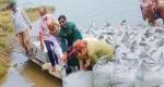 মধুখালীর মধুমতি নদী ভাঙ্গন রোধে জিও ব্যাগ ডাম্পিং কাজের উদ্বোধন