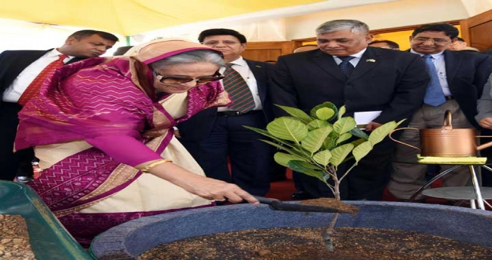 মঙ্গলবার প্রধানমন্ত্রী শেখ হাসিনা ব্রুনাইয়ে বাংলাদেশ হাইকমিশন প্রাঙ্গণে গাছেরচারা রোপন করেন-পিআইডি